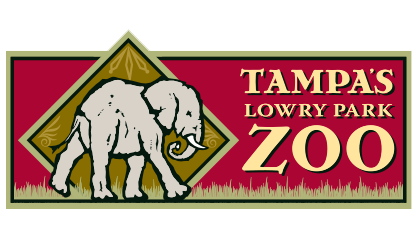 Lowry Park Client - Tampa AV ERG